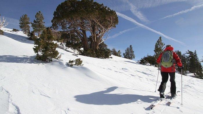 Italia Tunda Pembukaan Kawasan Ski hingga 5 Maret 2021