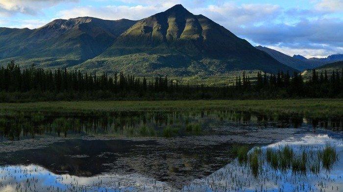 4 Taman Nasional dan Hutan yang Cocok Dikunjungi Setelah Pandemi Covid-19