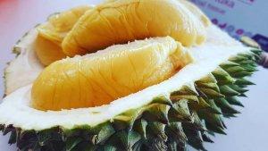 Rekomendasi 6 Tempat Makan Durian Terfavorit di Jakarta, Rasa Duriannya Bikin Nagih
