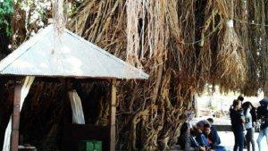 Makam Loang Baloq, Tempat Wisata Religi di Lombok yang Punya Tradisi Unik