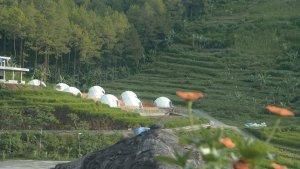HTM dan Harga Paket Edufarm Lembah Indah Malang Terbaru 2021, Cara Seru Edukasi Agrikultur