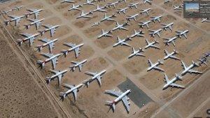 Lama Diparkir karena Pandemi Covid-19, Tempat Penyimpanan Pesawat Qantas Dipenuhi Ular Derik
