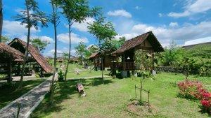 Taman Sehat Rejosari Tempat Makan Unik di Delanggu, Bisa Kulineran Sambil Panen Padi