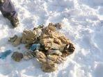 54-potongan-tangan-ditemukan-di-dekat-perbatansan-china_20180309_143409.jpg