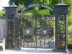 alnwick-poison-garden-taman-yang-penuh-tanaman-beracun-di-inggris.jpg