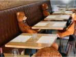 boneka-beruang-di-restoran.jpg