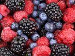 buah-berry_20180708_191841.jpg