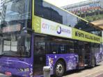bus-pariwisata-mpok-siti_20160728_200259.jpg