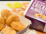 chicken-nugget-mcdonalds_20171117_143721.jpg