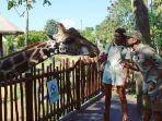 daniel-alves-dan-joana-sanz-liburan-ke-bali-safari.jpg