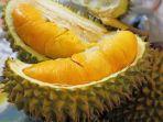 durian-monthong_20170115_165114.jpg