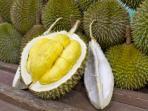 durian_20161104_205720.jpg