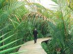 green-talao-park-padang-gambar.jpg