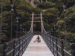 hallasan-national-park-pulau-jeju.jpg