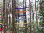 hammock-diikat-di-antara-pohon-pinus-di-top-selfie-pinus-kragilan.jpg