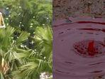 hujan-uang-dan-hujan-darah_20180301_170652.jpg