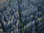 hutan-batu-madagaskar_20170616_204929.jpg
