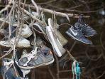 hutan-dipenuhi-sepatu.jpg