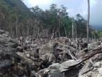 hutan-mati_20160812_205540.jpg