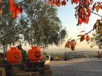 ilustrasi-suasana-halloween-di-legoland-windsor.jpg