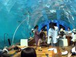 ithaa-undersea-restaurant_20180831_133451.jpg