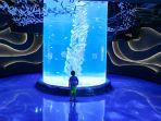 jakarta-aquarium-neo-soho_20171110_104305.jpg