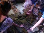 jakarta-aquarium_20170819_173138.jpg