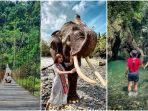 jelajah-wisata-alam-tangkahan.jpg