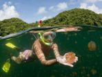 jellyfish-lake-rock-islands-palau_20170802_154636.jpg