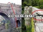 jembatan-overtoun.jpg