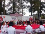 joko-widodo-di-karnaval-danau-toba-2016_20160821_160706.jpg