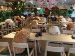 kafe-di-kebun-binatang-izu-shaboten-jepang.jpg