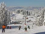 kapaonik-ski-resort-serbia.jpg