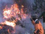 kebakaran-gunung-lawu_20180620_142728.jpg