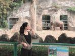 kebun-binatang-ragunan-jakarta-selatan.jpg