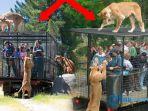 kebun-binatang_20170531_173020.jpg
