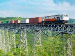 kereta-barang-atau-rail-express.jpg