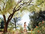 kings-park-dan-botanical-garden_20180719_153213.jpg