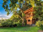 konas-1st-luxury-1-br1b-treehouse-w-ocean-view.jpg
