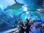 liburan-di-seaworld-ancol.jpg