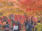 musim-gugur-di-korea-selatan_20180808_164103.jpg