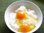 nasi-putih-dan-telur-mentah_20181022_154553.jpg