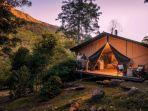 nightfall-wilderness-camp-gold-coast.jpg