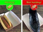 not-hotdog_20170516_191652.jpg