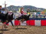 ostrich-racing_20170402_202247.jpg