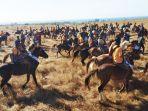 parade-1001-kuda-sandalwood-di-padang-sabana-walakiri_20180713_184338.jpg
