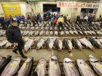 pasar-ikan-tsukiji-di-jepang.jpg