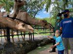 pengunjung-anak-yang-memberi-makan-unta-di-kebun-binatang-surabaya.jpg