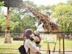 pengunjung-di-kebun-binatang-surabaya.jpg