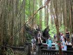 pengunjung-di-monkey-forest-ubud.jpg
